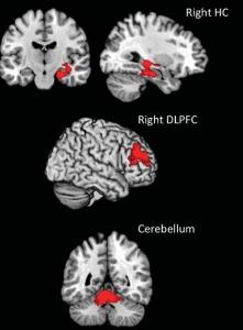 Brain train in science